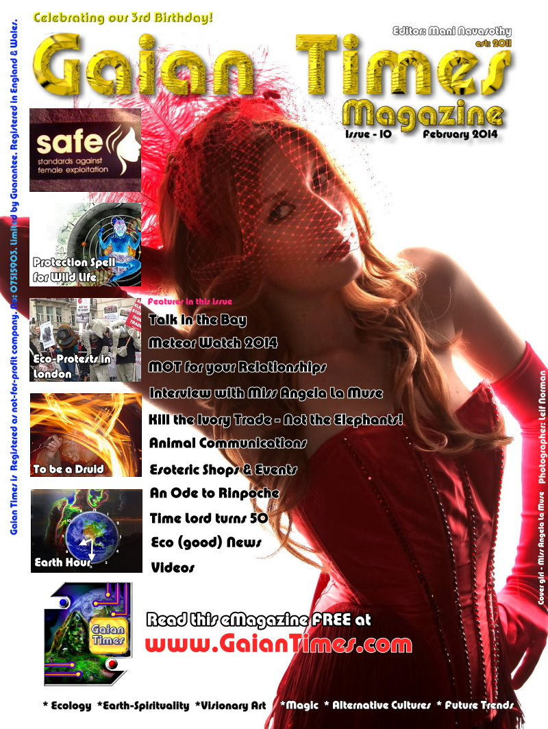 Alt Cover- GT10 Feb2014